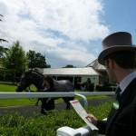 Free Horse Racing Tips UK