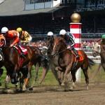 Best Online Horse Betting
