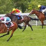 Expert Horse Betting Tips